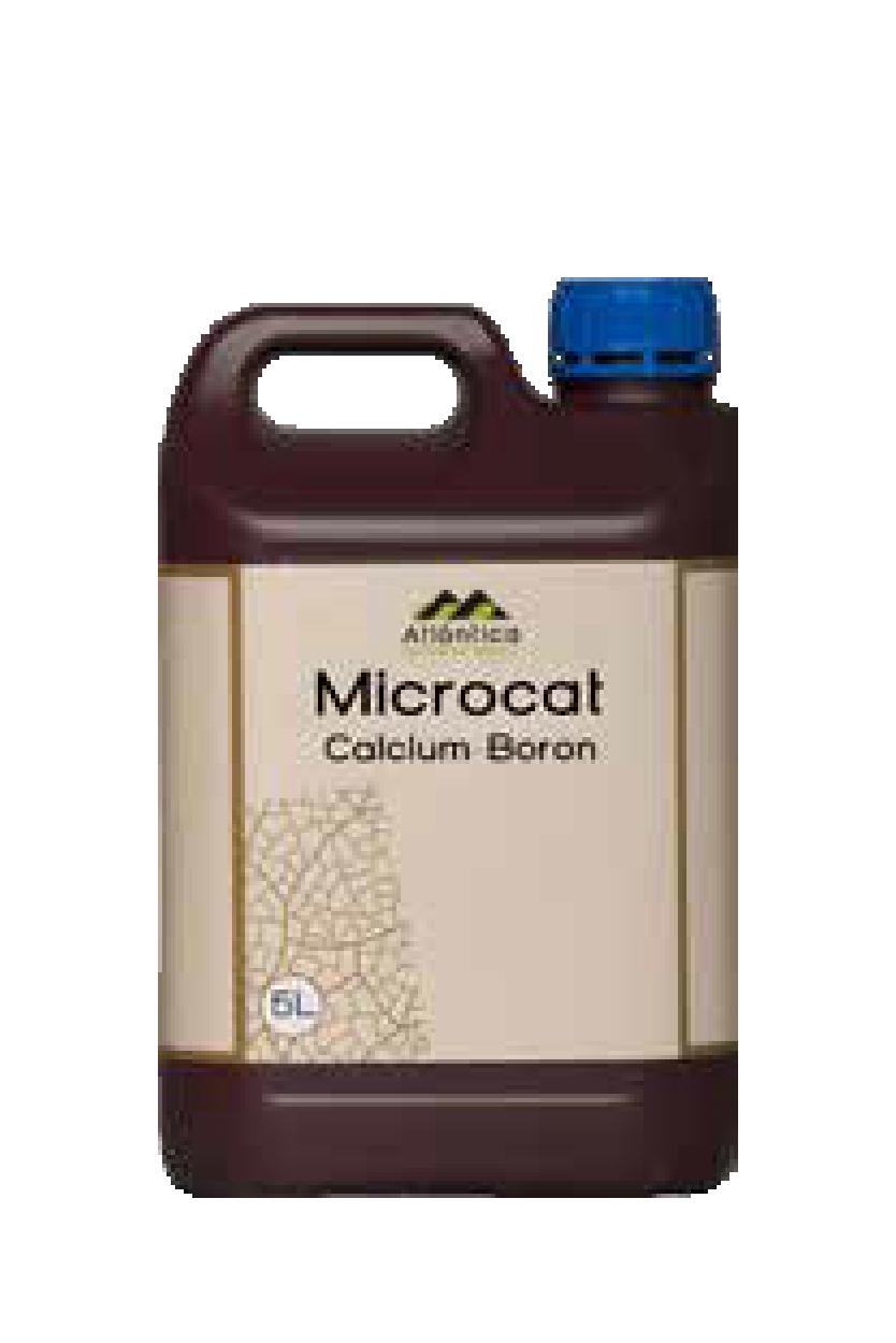 Мікрокат кальцій-бор