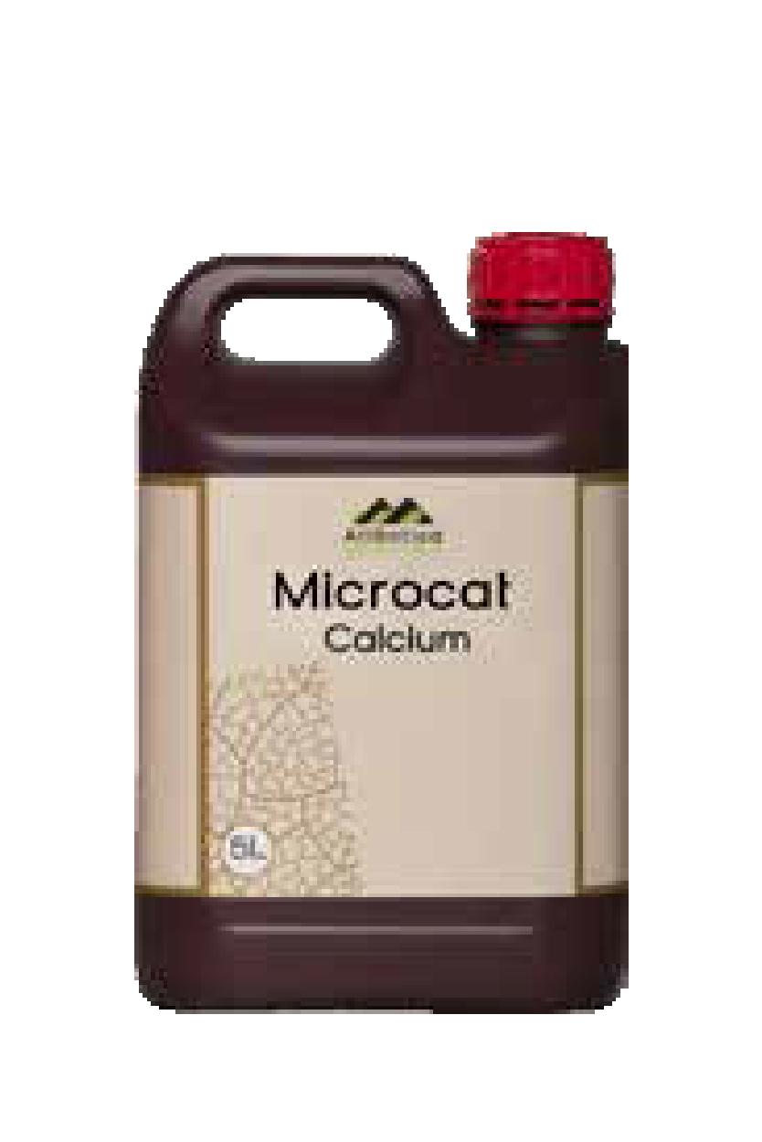 Мікрокат кальцій